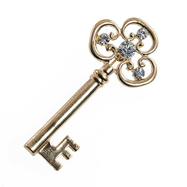 PA667: Golden Key Pin with Crystal