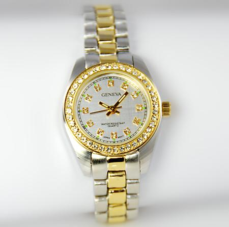 WA70: Ladies Professional 2-Tone Watch